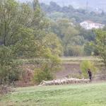 Laurac en Vivarais