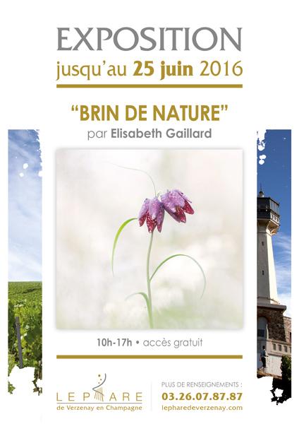 Brin-de-Nature-(2)