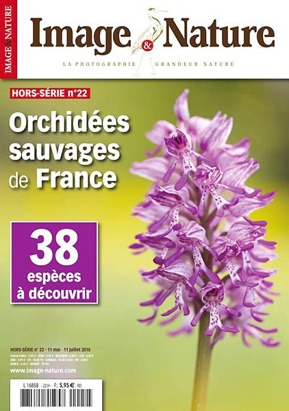 image-&-nature-hors-série-orchidées
